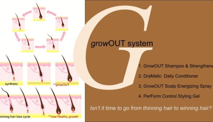 Growout system hair cycle hair growth chart thinning hair grow faster natural organic silicone free sls free